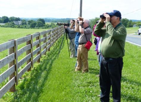 2015 grassland birders